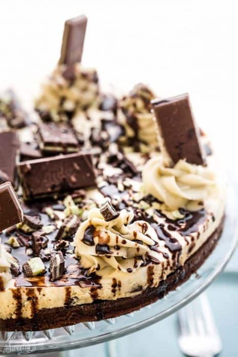 Mint Andes Chocolate Brownie Cheesecake - rich, decadent and just perfect for serving at any special holiday such as St. Patrick's Day or Christmas. Best of all, the chewy, fudgy brownie crust is the perfect compliment to the cool and creamy mint cheesecake filling.