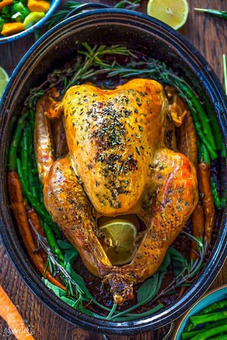 The BEST Garlic Herb Roasted Turkey with step-by-step photos and instructions to roast the perfect juicy, moist, tender and golden turkey bursting with flavor. No more dried out or bland turkey, this is the recipe to keep for years to come Thanksgiving, Christmas and all your holiday parties and dinners!